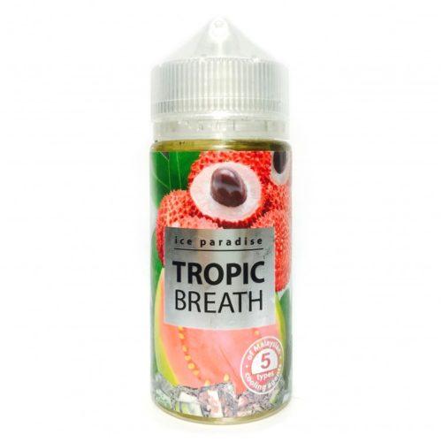 ic tropic beach 750x750 500x500 - Ice Paradise  Tropic Breath 100 мл 3 мг